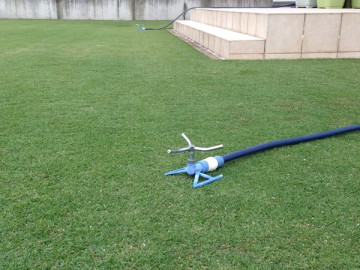 Two blue sprinkler on green lawn.
