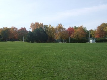 A park in Montreal. Green lawn and trees with autumn foliage in the park.