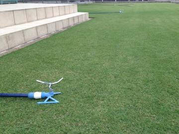 芝生の庭に並んだ4個の青いスプリンクラー。反対側からの撮影。