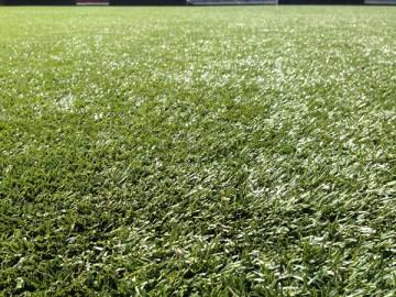 きれいな芝生、近づいてみると人工芝。
