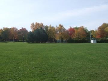 モントリオールの公園。緑の芝生と紅葉をむかえた公園の樹木。
