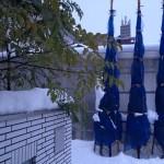 1月20日の玄関前のコニファーとシマトネリコ。10数センチの雪が積もっている。