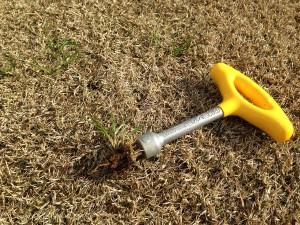 「回転式草取器 抜けるンですミニ」で根こそぎ草が抜けた。
