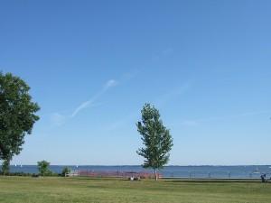 青い空、青いセントルイス湖、そして緑の芝生と1本の緑の樹。