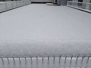 2016年3月1日。芝生はまた完全に雪の下。