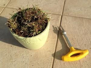 抜けるんですミニで抜いた雑草。