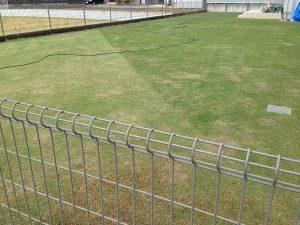 芝刈り、その2。