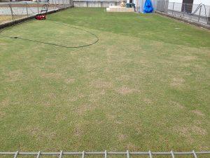芝刈り、その3。