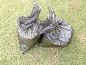ゴミ袋に軽く2袋の刈り芝。