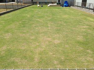 バーチカルカット(=根切り)の終了後の芝生とリョービLM-2800。