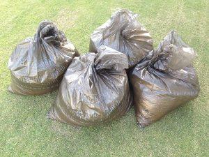 ゴミ袋に3.5袋の回収されたサッチ。