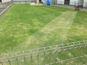 2016年5月14日の裏庭の芝生。芝刈り開始。南東から撮影。