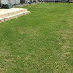2016年5月21日の裏庭の芝生。南西から。