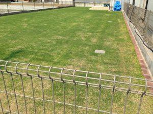 2016年5月21日の裏庭の芝生。北東から。