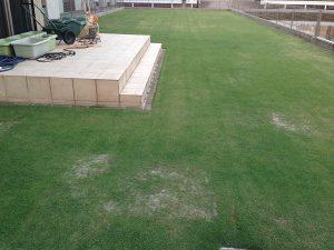 目砂の後の芝生。