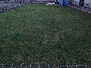 作業後の裏庭の芝生。東から。