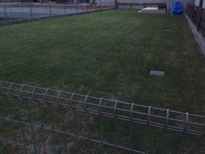 作業後の裏庭の芝生。北東から。