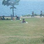 スタンレーパークのビーチと芝生。