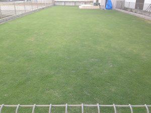2016年6月10日の芝生。東側から。