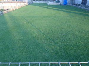 2016年6月18日の芝生。東側から。