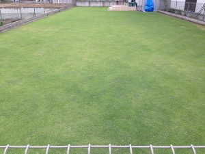 2016年6月19日の午後の裏庭の芝生。東側から。