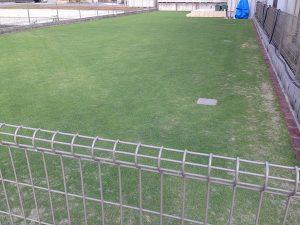 2016年6月20日の裏庭の芝生。北東から。