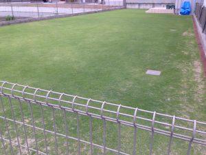 2016年6月21日の裏庭の芝生。北東から。