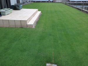 芝刈り後の芝生。西側から。