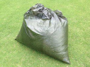 刈り芝。黒いごみ袋に軽く一袋。