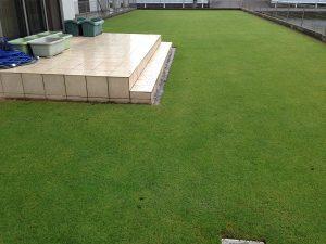 2016年7月5日の朝の芝生。雨。西側から。
