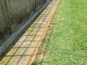 芝生のエッジとレンガの間の隙間に目土を補充した。