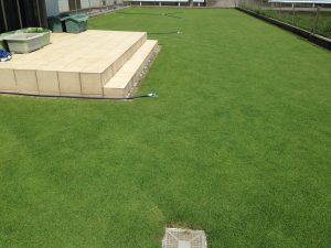 2016年7月30日の昼の芝生。西側から。