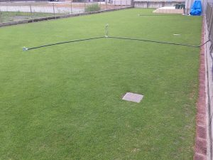 2016年8月1日の朝の裏庭の芝生。北東から。