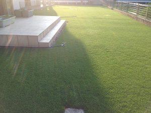 2016年8月5日の朝の裏庭の芝生。西側から。