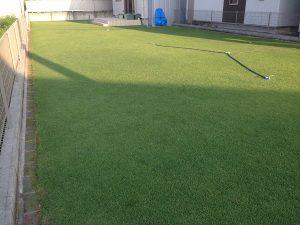 2016年8月5日の朝の裏庭の芝生。南東から。