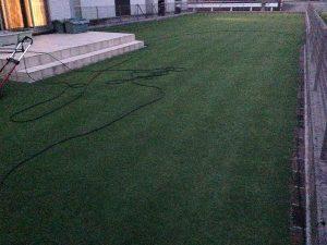 既に薄暗い芝刈り後の芝生。南西から。