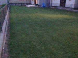 既に薄暗い芝刈り後の芝生。南東から。