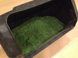 刈れた芝草。集草箱に半分。リビングで撮影。