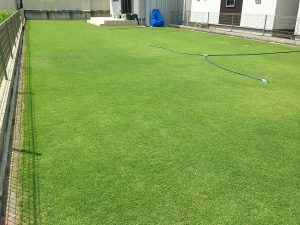 2016年8月11日の裏庭の芝生。南東から。