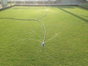 タカギのかんたん液肥希釈キットの使用でスプリンクラーの水圧が低下、散水範囲が縮小。