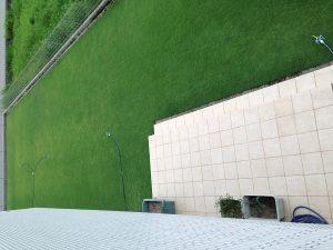 2016年8月18日の朝の裏庭の芝生。2階のバルコニーから。