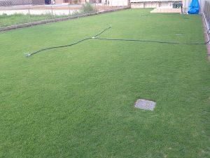 2016年8月25日の朝の裏庭の芝生。