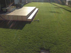 2016年8月25日の朝の日の出の後の裏庭の芝生。