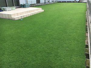 2016年8月26日の朝の裏庭の芝生。