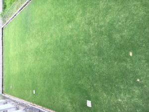 2016年8月27日の昼の裏庭の芝生。2階のバルコニーから。