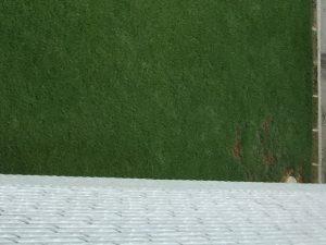 2階のバルコニーから。北西の隅のうすい栓の周囲の芝生が枯れていた箇所。