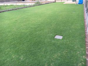 2016年8月28日の朝の裏庭の芝生。