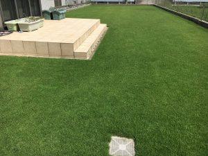 2016年9月1日の昼過ぎの裏庭の芝生。