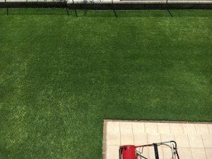 芝刈り(or 穂刈り?)終了後の芝生。2階のバルコニーから撮影。