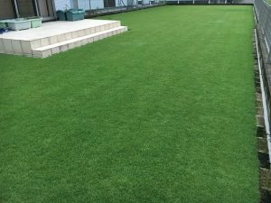 2016年9月14日の朝の裏庭の芝生。